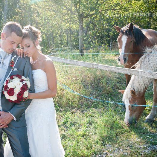 photo champêtre et intimiste des mariés près du pré où broutent des cheveux