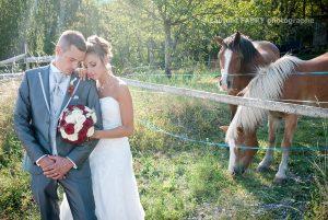 photo champêtre et intimiste des mariés près du pré où broutent des cheveux, mariage en montagne, Savoie